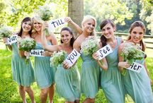 Bridesmaids / weddings