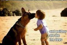 Human - dog relationship