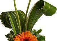 kukkia / ihania asetelmia
