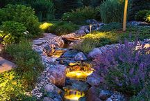 Dreamy Gardens / Gardens we love. Gardens we'd love to have. Gardens that are just too beautiful to not notice.
