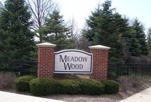 Meadow Wood in Lake Zurich,illinois / Meadow Wood is a subdivision of townhomes built in the late 2000's by Pulte. Meadow Wood features 76 town houses with floor plans ranging from 1,716 up to 2,146 square feet of living space. Meadow Wood is located in Lake Zurich, Illinois north of Miller Road and east of Route 12 (Rand Road). If you are interested in finding out more information on available property in Meadow Wood in Lake Zurich or have any questions about living in our community call 847-847-4711