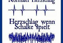 Schalke Sprüche