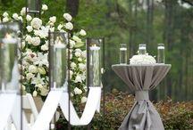 czika's wed