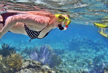 Cayo Romano Cuba / All about Cayo Romano – Links to important websites focused and dedicated on Cayo Romano, Things to do in Cayo Romano, Best Hotels in Cayo Romano and Excursions from Cayo Romano in the Jardines del Rey Archipelago