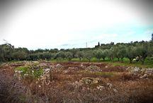 Πέτρινα Πηγάδια, Κερί - Ζάκυνθος / Wells Stone, Keri - Zakynthos