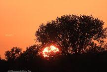 Photography By AnDue / PhotographyByAnDue Ich fotografiere mit einer Nikon Coolpix P900 /www.facebook.com/pg/PhotosByAnDue/photos