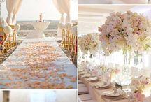 Sasha Wedding