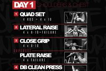 Programme 28 day's