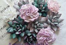 cactus|кактусы❤ / декор,виды.....