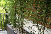 garden norwood