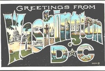 Vintage Washington DC Postcards / by Scholastica Travel