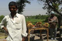 Bihar- My native place