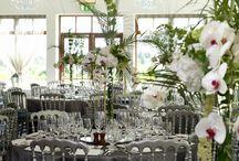 Weddings at the Lodge at Ashford / Wedding photos at the Lodge of Ashford, Co. Mayo