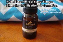 Bienfaits des Huiles Essentielles / Découvrez tous les bienfaits miraculeux des huiles essentielles.