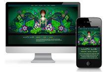 Boulder Web Design / A sample of work from web designers based out of Boulder, Colorado.