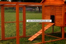 Chicken coops / by Lisa Daugherty