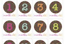 Printables/Fonts / by Jessica {Chic Sugar}