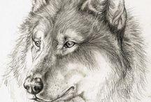 Волки:3