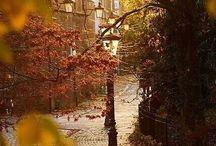 Kleur-Herfst