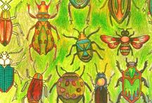 """Owady / W """"Tajemnym Ogrodzie"""" Johanny Basford są piękne żuczki, ważki i motyle - jak Ty pokolorujesz swoje?"""