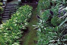 Givenchy garden - Cap Ferrat