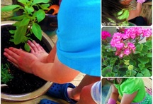 Gardening with Kids / Kids Garden Activities / by Jackie Higgins