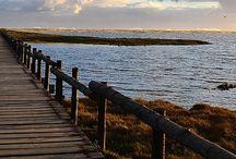 LagoonAndSea