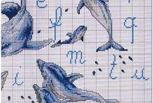 dolfijn borduur abc