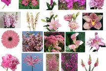 Svatební kytice-růžové