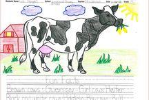 Dairy Farming / Dairy Farming