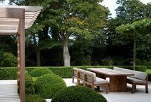 contmporary garden