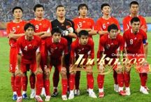 Prediksi Skor China vs New Zealand 14 November 2014