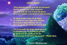 poezii....