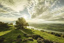 © Kim Sokola Landscape