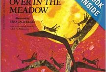 book nook: Over in the Meadow / for Little Wonders Preschool a lit and play based program  math: estimating/estimations science: senses; touch