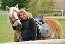 Haflinger horses / by Therese Dignard