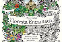 Floresta encantada livro