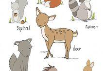 Ilustrações fofas (Cute illustrations)