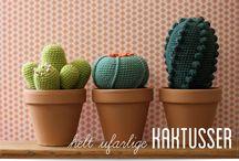 cactus y animalillos chet