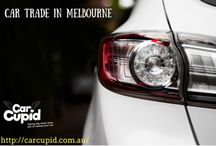 Article / Article CArcupid.com.au