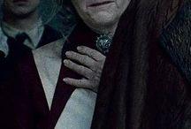 Harry Potter / Zde můžete vidět takový menší přehled obsazení Harryho Pottera!  Příjemné pokochání!