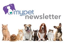 Life with MyPet / Pet lifestyle and wellness!