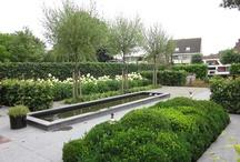 Moderne tuin Modern garden