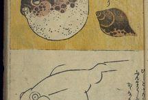 Рыбы, лягушки, всякое водное