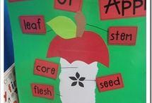 Buletin board apple