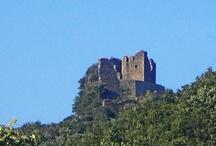 Montauto ( 32 km ) / Bellissima la passeggiata per arrivare a godere il panorama dalle rocca, le cui mura sono avviluppate dalle piante