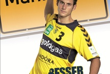 Marketingkampagne Besser 2011/12 / Die Rhein-Neckar Löwen werben gemeinsam mit ihren Partnern unter dem Motto Besser gemeinsam!
