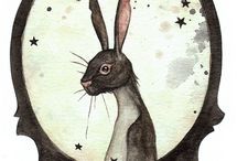 Rabbits / by Lesley pearce