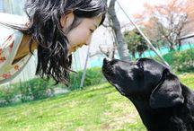 amore degli animali