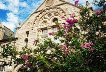 Tulane University Campus / Take a look at the special places on campus where students love to work and play! / by Tulane University